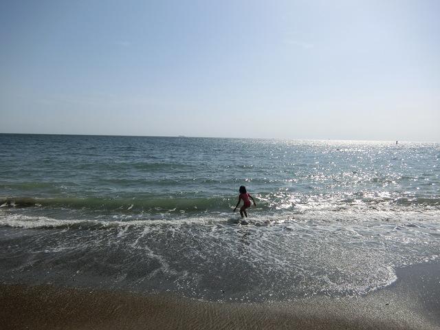 泳いだり ♪