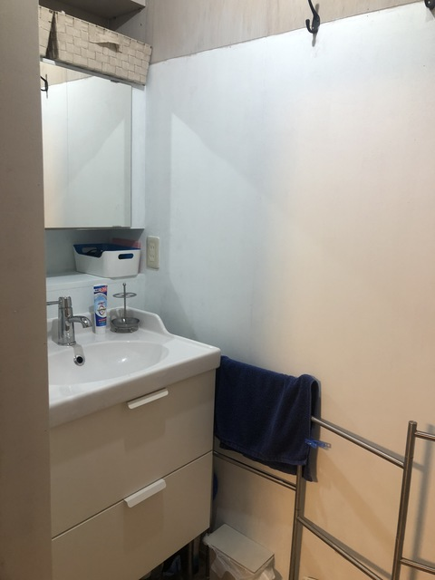 押入れを改造した明るいバスルーム。シャワー完備。