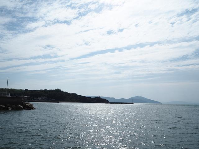 国道を挟んだ向かいには、海が広がります。
